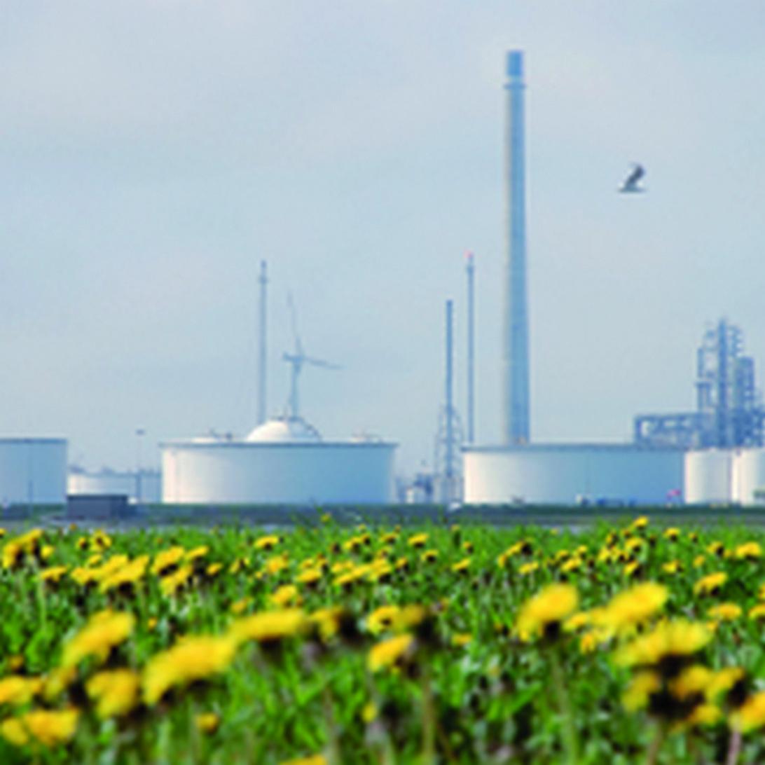 Klar Bio-Oil Produção